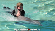 Sea World Dolphin Interaction Program