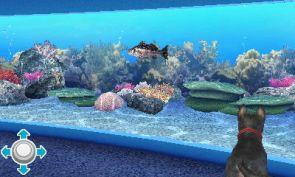Petz Beach Aquarium