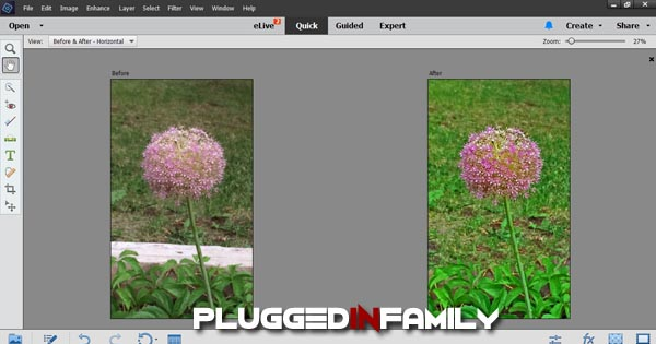 Flower picture before and after edit in Adobe PhotoShop Elements 14