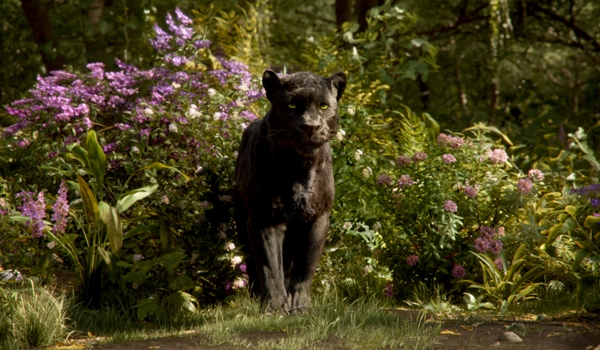 Panther Bagheera from The Jungle Book