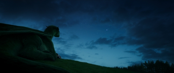 Pete and his dragon looking at the stars