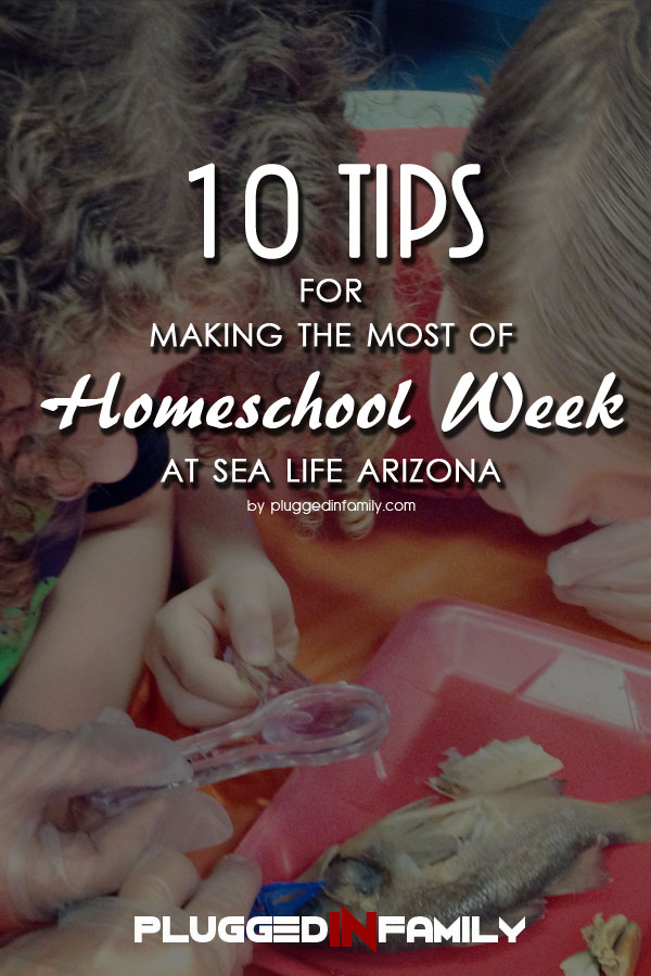 10 tips for making the most of Homeschool Week at SEA LIFE Arizona