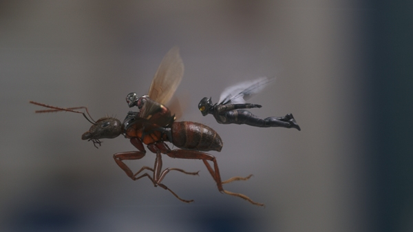 Ant-Man and The Wasp flying