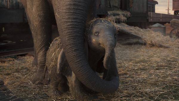 Dumbo with Mrs. Jumbo's trunk around him