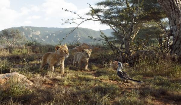 Simba Nala Zazu in The Lion King